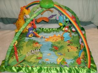 Rainforest Melodies Lights Deluxe Jungle Gym Wonderful Baby Gym