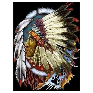 Wall Art  Posters  INDIAN CHIEF WHITE CLOUD Poster