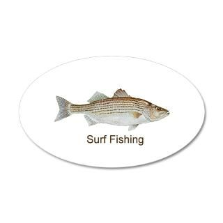 Striped bass on popscreen for Surf fishing for stripers