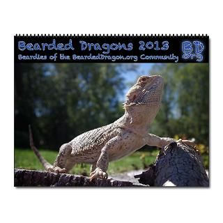 2013 Bearded Dragon Calendar  Buy 2013 Bearded Dragon Calendars