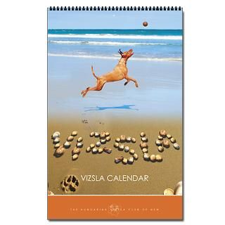 2013 Wirehaired Vizsla Calendar  Buy 2013 Wirehaired Vizsla Calendars