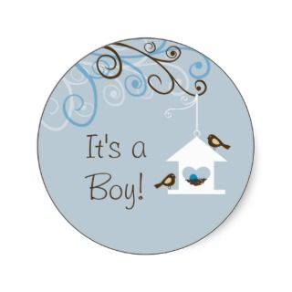 Bird House Baby Boy Sticker