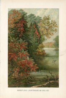 Indian Summer Lake Erie Antique Chromolithograph Print A Kerner