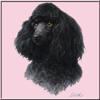 Killen Black Toy Poodle Dog Shirt s M L XL 2X 3X 4X 5X Miniature Mini