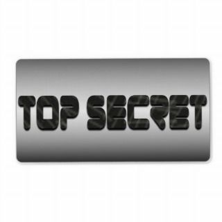 Top Secret in Metallic Silver Military Grunge Personalized Shipping
