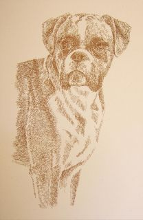 BOXER DOG PRINT Signed Stephen Kline Lithograph #241 ART DRAWN FROM
