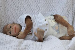 So Cute ♥ REBORN BABY BOY ORANGUTAN MONKEY CHIMP WAS BINDI NOW KOKO