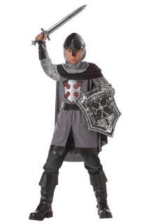 Brand New Dragon Slayer Medieval Knight Child Halloween Costume