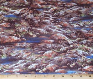 Sunset Lake Rocks River Landscape Fabric yds Jim Hansel Wilmington