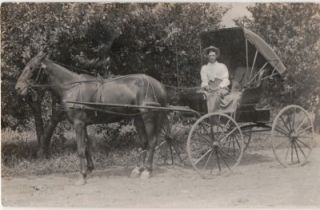 Vintage Real Photo Postcard Horse Buggy Man Lap Robe