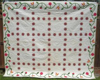1800s Museum Quality Star of Lemoyne Hand Made Quilt w Applique Vine