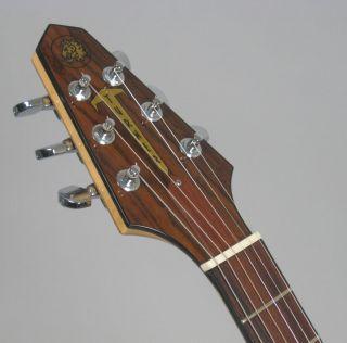 Turner Model 1 Guitar with Piezo Pickup Case Lindsey Buckingham