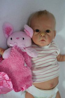 Brand New Saoirse Doll Kit Bonnie Brown Sold Out 872 1000