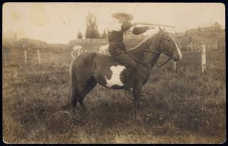 Cowboy Riding Horse Bareback Shooting Rifle 1906 RPPC