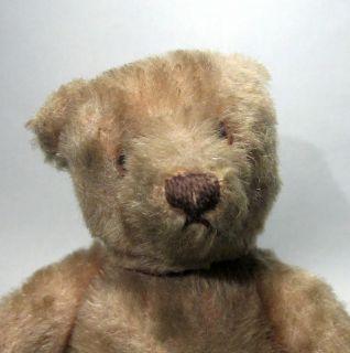 "Very RARE 1930 8"" Antique Steiff Beige Mohair Wide Hips Teddy Bear"