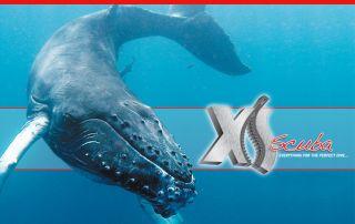 XS Scuba Mesh Backpack for Dive Snorkel Gear XS BG325