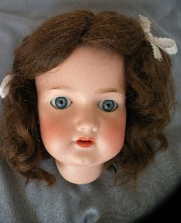 Very Large Armand Marseille Antique Doll Head Size 14