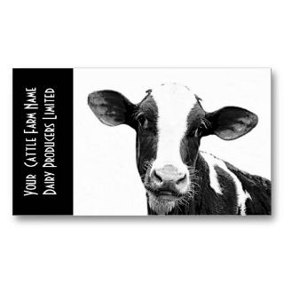 Holstein Veal or Dairy Calf Business Card Template