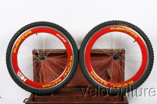 Hed Mountain Bike Wheels RARE and Vintage Yeti