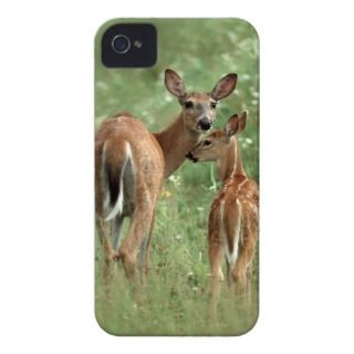 White Tailed Deer Doe with Her Fawn   Baby Animals iPhone 4 Case Mate