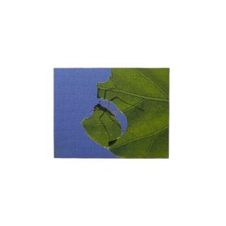 Costa Rica, Leaf cutter ants, Atta cephalotes Jigsaw Puzzle