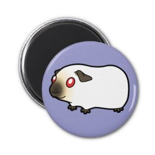 Cartoon Guinea Pig (himalayan) magnets by SugarVsSpice