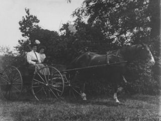 Two Well Dressed Women with a Dog Sitting in a Horse Drawn Cart in the Country Premium Photographic Print by Wallace G. Levison
