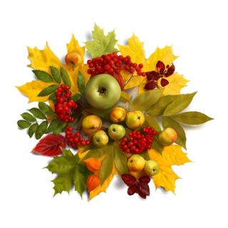 An autumn wreath with leaves, apples and berries Giclee Print