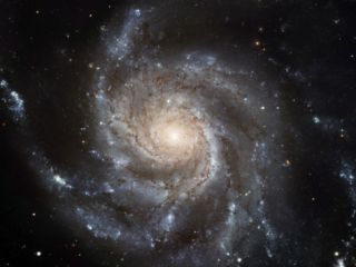 The Messier 101, or Pinwheel, Galaxy Spins in Pixel Perfection Photographic Print by NASA