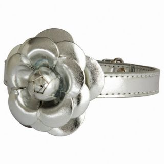 The Flower Dog Collar by LazyBonezz   Silver