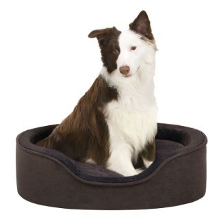 Soft Touch Faux Suede Oval Cuddler Dog Bed   Brown
