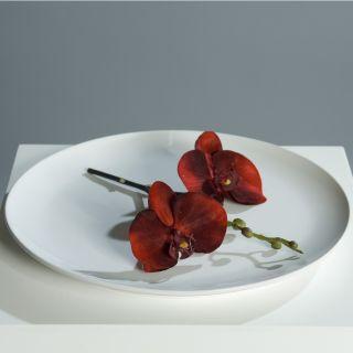 Autodeko autoschmuck herz hochzeit tischdeko doppelherz - Tischdeko orchideen hochzeit ...