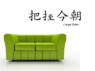 Chinesisches Wandtattoo Carpe Diem