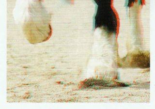 Rewe Unsere Erde Sammelsticker Nr. 148 Shire Horse 3D Sticker Deine