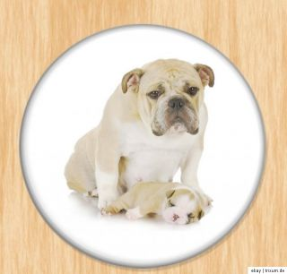 Bulldoggen Welpen verschiedene Motive AUSWAHL Button, Magnet, Spiegel