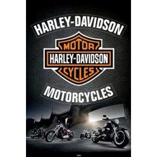 1art1 48797 Harley Davidson   Logo, Adler Poster 91 x 61 cm