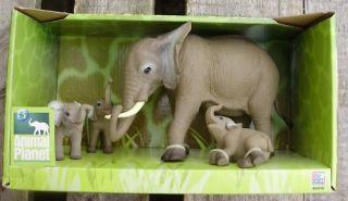 Animal Planet Tiere Tierfamilie Elefant mit Baby