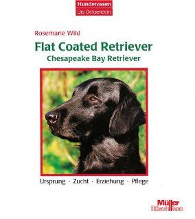 Flat Coated Retriever / Chesapeake Bay Retriever. Ursprung, Zucht