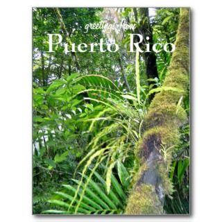 El Yunque, Puerto Rico Postcards