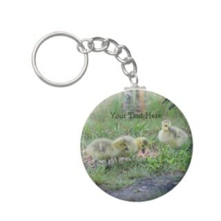 Canada Geese Babies Nature Photo Keychain