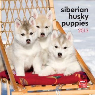 Siberian Husky Puppies   2013 Mini Calendar Calendars