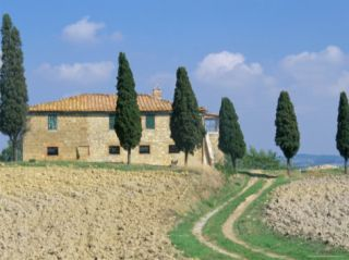 Villa with Cypress Trees, Pienza, Tuscany, Italy Photographic Print by Jean Brooks