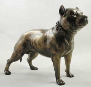 MALE PIT BULL TERRIER FIGURINE Bronze Statue DOG ORNAMENT   Free Post