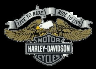 Harley Davidson Aufkleber Live to Ride Adler Bar + Shield Logo 22x16cm