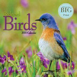 Backyard Birds 2010 Big Print Calendar