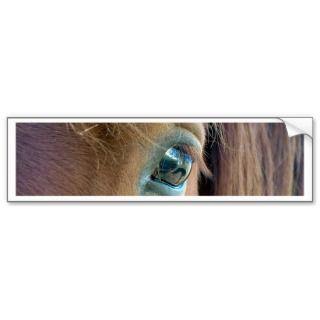 Horse Vision Bumper Sicker