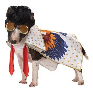 Pup A Razzi Rock n Roll King Dog Halloween Costume