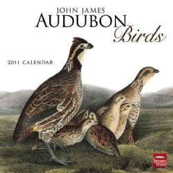 John James Audubon Birds 2011 Calendar (Calendar)
