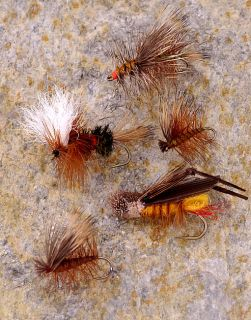 All Around 36 piece Dry Flys Fly Fishing Selection