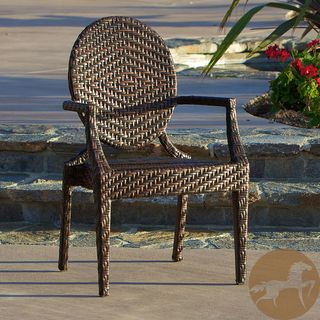 Christopher Knight Home Adriana Brown PE Wicker and Iron Frame Wide